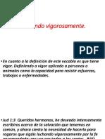 VIGOROSAMENTE.pptx