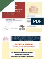 Aborto-Equino-III-Ciclo-de-Medicina-Equina-Pfizer Saúde Animal
