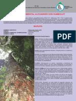PP130-Marupa