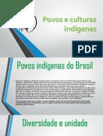 Povos e culturas indígenas 2