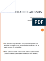Enfermedad de Adisson