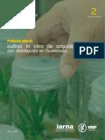 protocolos-para-cultivo-in-vitro-de-orquideas-de-guatemala