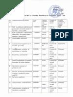 Plan-achiziții-2019.pdf