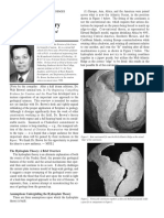 hydroplatetheoryreviewed-walt_brown.pdf