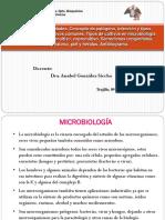 T-4 MICROBIOLOGIA ANTIBIOGRAMA. PARASITOLOGIA.pptx
