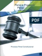 Processo_Penal_Constitucional_2017.pdf