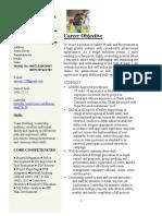 new cv - Copy 1 - Copy.pdf