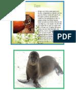 ANIMALES  DE  EL  PARQUE  DE LAS LEYENDAS