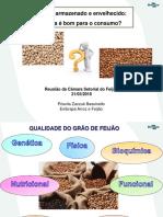 priscila-apresentacao-camara-setorial-feijao-21-marco2018