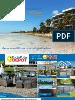 Palm Beach en Français - Guide immobilier - vol 1 no 1