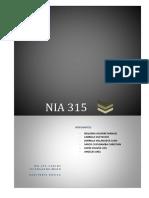 287099507-Nia-315-Auditoria.docx