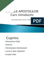 FAPTELE APOSTOLILOR Privire de ansamblu