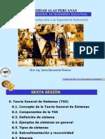 6.Teoría General de Sistemas