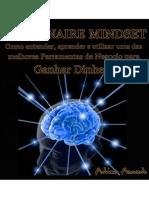 MILLIONAIRE-MINDSET-Manual