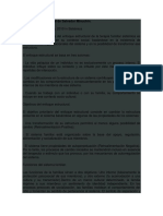 El_enfoque_estructural_de_Salvador_Minuc.docx