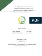 cover LAPORAN PRAKTEK KLINIK KEBIDANAN.docx