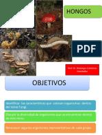 hongos 2.pdf