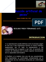 REPRODUCCION DE PECES.ppt