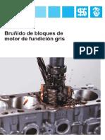 BRUÑIDO.pdf