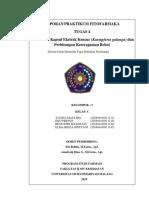 laporan fitofar tugas 4
