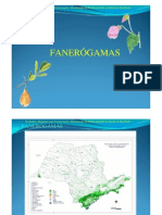 Fanerogamas
