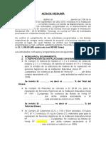 MODELO DE ACTA DE VEEDURIA - 2019