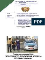 PP0030 REDUCCION DE DELITOS Y FALTAS QUE AFECTAN LA SEGURIDAD CIUDADANA