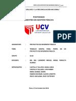 TRABAJO GRUPAL FINAL - PROYECTOS DE INVERSION PUBLICA.docx