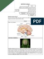 Lecture 1 & 2.pdf
