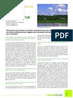05. El derecho ambiental en el Ecuador, entrevista a Fabián Corral. Anne-Lise Naizot.pdf