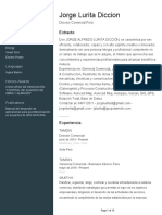 CV JORGE LURITA.pdf