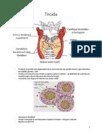 Endocrinologie C3