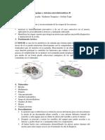 Equipos y sistemas microinformáticos II