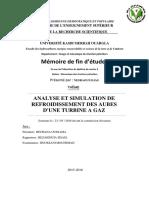Analyse_et_simulation_de_refroidissement_des_aubes_dune_turbine_a_gaz