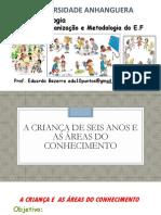 Apresentação_AULA_ÁREAS_CONHECIMENTO