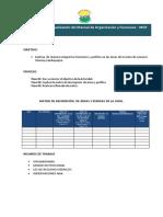 METODOLOGIA PARA FOCUS GROUP.pdf