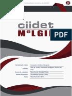 Melgie ICD CASO DE ESTUDIO ACTUALIZACIÓN UNIDAD 2