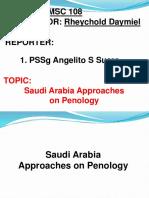 PSSg Suero Saudi Arabia Approaches on CJS