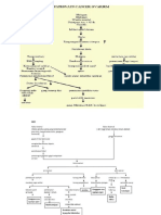 261813963-Pathway-CA-Ovarium.docx