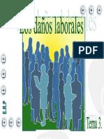 3-Daños Laborales.pdf
