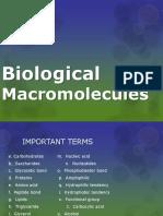 Biological Macromolecules.pptx