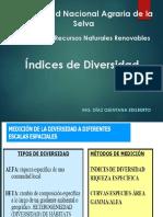 06_Índices de Diversidad-1