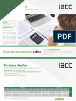 Programa-continuidad-Contador-Auditor