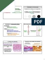 2 TÉCNICAS-CONTRASTE.pdf