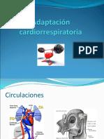 Adaptación cardiorrespiratoria.ppt