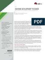 mi-middleware-teaching-elephant-to-dance-ebook-f8980kc-201709-en (1).pdf