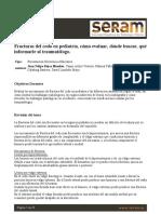 1325-Presentación Electrónica Educativa-1399-1-10-20190227.pdf