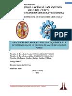 (determinacion de la presion de vapor de liquidos puros)II.docx