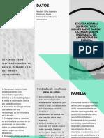 15 triptico.pdf
