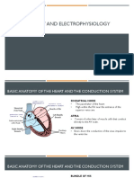 BASIC ANATOMY AND ELECTROPHYSIOLOGY.pptx